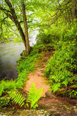 Trail along the Gunpowder River, near Prettyboy Reservoir in Bal — Stock Photo