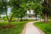 Ağaç ve bina gettysburg üniversite, penn, yol — Stok fotoğraf