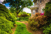 Trees and bushes behind the Cylburn Mansion at Cylburn Arboretum — Stock Photo