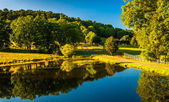 Trees reflecting in a pond in the Shenandoah Valley, Virginia. — Stock Photo