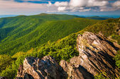 VIew of the Appalachian Mountains from a cliff on Hawksbill Summ — Foto Stock