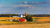 View of a farm and country road in rural York County, Pennsylvan — Stock Photo
