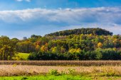 View of early autumn color in the rolling hills of York County,  — Stock Photo
