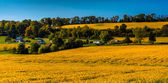 View of farm fields and  hills in rural York County, Pennsylvani — Stock Photo
