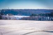 Vista de campos de cultivo cubierto de nieve en rural york county, pennsylvania — Foto de Stock