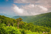 View of the Appalachian Mountains on a foggy day in Shenandoah N — Foto Stock