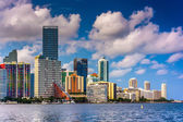 View of the Miami Skyline from Virginia Key, Miami, Florida. — Stock Photo