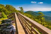 Walking bridge and view of the Appalachians from Big Schloss, in — Stock Photo