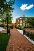 Walkway and buildings at John Hopkins University in Baltimore, M — Stock Photo