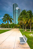 Walkway and distant skyscraper seen at South Pointe Park, Miami  — Stok fotoğraf