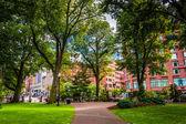 Walkway in the Boston Public Garden.  — Stock Photo