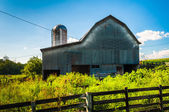 Barn on a farm in the Shenandoah Valley, Virginia.  — Stock Photo
