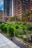 Garden along a path in Battery Park City, Manhattan, New York.  — Stock Photo