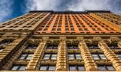 The Whitehall Building, in Lower Manhattan, New York.  — Stock Photo