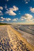 Evening light at the beach in Naples, Florida.  — Foto de Stock