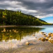 Evening light at Jordan Pond in Acadia National Park, Maine. — Stock Photo #57941905