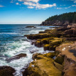 Otter Cliffs and the Atlantic Ocean in Acadia National Park, Mai — Stock Photo #57943997