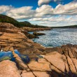 Otter Cliffs and the Atlantic Ocean in Acadia National Park, Mai — Stock Photo #57944305