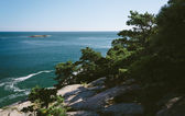 Cliffs and view of the Atlantic Ocean in Acadia National Park, M — Stock Photo