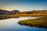 Evening light on a stream and mountains near Tremont, in Acadia  — Stock Photo