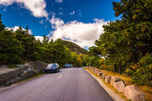 The Park Loop Road in Acadia National Park, Maine.  — Stock Photo
