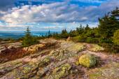 View from Blue Hill Overlook in Acadia National Park, Maine.  — Zdjęcie stockowe