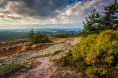 View from Blue Hill Overlook in Acadia National Park, Maine. — Stock Photo