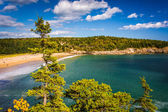 View of the Sand Beach at Acadia National Park, Maine. — Stock Photo