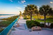 Palm trees and walkway along the beach in Daytona Beach, Florida — Stock fotografie