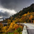 Autumn color and Linn Cove Viaduct, on the Blue Ridge Parkway, N — Stock Photo #58403673