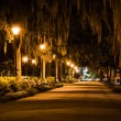 Oak trees and path at night in Forsyth Park, Savannah, Georgia. — Stock Photo #58409021