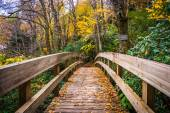 Autumn color and bridge on the Tanawha Trail, along the Blue Rid — Stock Photo