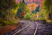 Autumn color along a railroad track in White Mountain National F — ストック写真