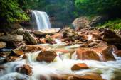Douglas Falls, on the Blackwater River in Monongahela National F — Stock Photo