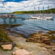Rocky coast and view of boats in the harbor at Bar Harbor, Maine — Stock Photo #58519723