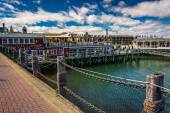 Restaurants at the harbor in downtown Bar Harbor, Maine. — Stock Photo