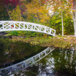 Autumn color and walking bridge over a pond in Somesville, Maine — Stock Photo #58542313