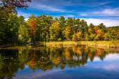 Early autumn color at North Pond, near Belfast, Maine. — Stock Photo