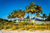 Palm trees and building on the beach in Fort Myers Beach, Florid — Stock Photo