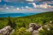 Pedregulhos e vista oriental das montanhas apalaches do urso — Foto Stock