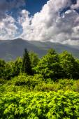 Mid-day view of the Appalachian Mountains from the Blue Ridge Pa — Stock Photo