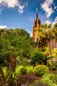 Palm trees and Cathedral of Saint John the Baptist in Charleston — Stock Photo