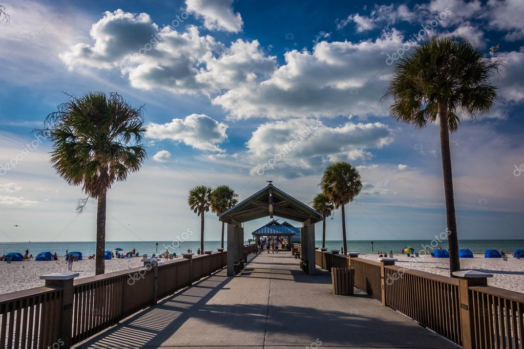 Palm trees and the fishing pier in clearwater beach for Fishing clearwater beach fl