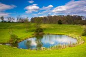 View of a pond in rural York County, Pennsylvania. — Stock Photo