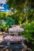 Bancos e mesa em um jardim em Key West, na Florida.. — Fotografia Stock