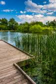 Boardwalk trail along the pond at Patterson Park, Baltimore, Mar — Stock Photo