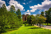 Clouds over trees and a building at Druid Hill Park, in Baltimor — Stock Photo