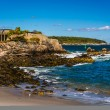 Rocky coast at Fort Williams Park, Cape Elizabeth, Maine. — Stock Photo #61298651
