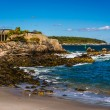 Rocky coast at Fort Williams Park, Cape Elizabeth, Maine. — Stock Photo #61299117