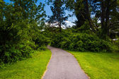 Path at Cylburn Arboretum in Baltimore, Maryland. — Stockfoto